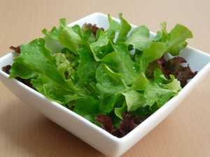 Plain salad. No onions, no cheese. Just the way I like it!